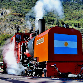 Patagonia tarin by Tomasz Budziak - Transportation Trains ( patagonia, transportation, trains )