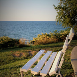 Lake Erie Views by Lauren Ann - City,  Street & Park  City Parks ( park, bench, lake,  )