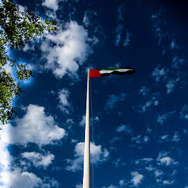 UAE by Masud Mallik - City,  Street & Park  Historic Districts ( sky, flag, color, uae, abudhabi )