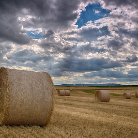 Storm approaching by Marco Bertamé - Landscapes Prairies, Meadows & Fields ( field, clouds, vlue, dry, hay, summer, cloudy, brown, grey, hay bale,  )