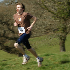 Runner by Brian Pierce - Sports & Fitness Running ( sport, runner, trelissick, running, marathon,  )