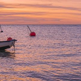 Cormorant Cruise by Keith Walmsley - Transportation Boats ( ripples, coast, sunset, vctoria, cormorants, australia, boats, clouds, landscape )