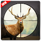 Jungle Deer Hunter