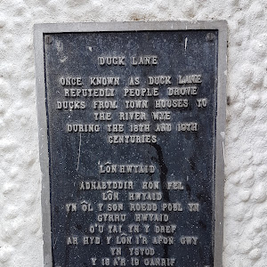 Origins of Duck Lane, Builth WellsSubmitted by: Alistair Wylie
