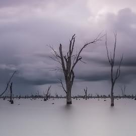 Lake Mulwalla Pano by Jim Merchant - Landscapes Waterscapes ( waterscape, long exposure, lake, landscape )