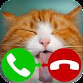 Free fake call cat 2 APK for Windows 8