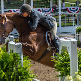 The Jump by Mike Watts - Animals Horses ( horse, blowing rock, jump )