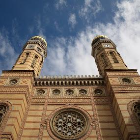 Synagogue in Budapest by Jakub Juszyński - Buildings & Architecture Public & Historical ( hungary, tower, budapest, sky, jewish, synagogue, jews )