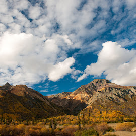 Sheep Mountain in Fall by Greg Varney - Landscapes Mountains & Hills ( cloud, sky, mountain, blue, shadow )