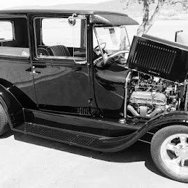 Black Beauty by Ron Mullins - Transportation Automobiles ( car, automobile, car show, hot rod, ford, antique, modified )