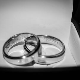 rings B&W by Josip Križanić - Wedding Details ( wedding photography, black and white, wedding, rings )