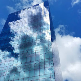 Sky Tower  by John Ireland - Buildings & Architecture Office Buildings & Hotels ( sky, reflection, office building )