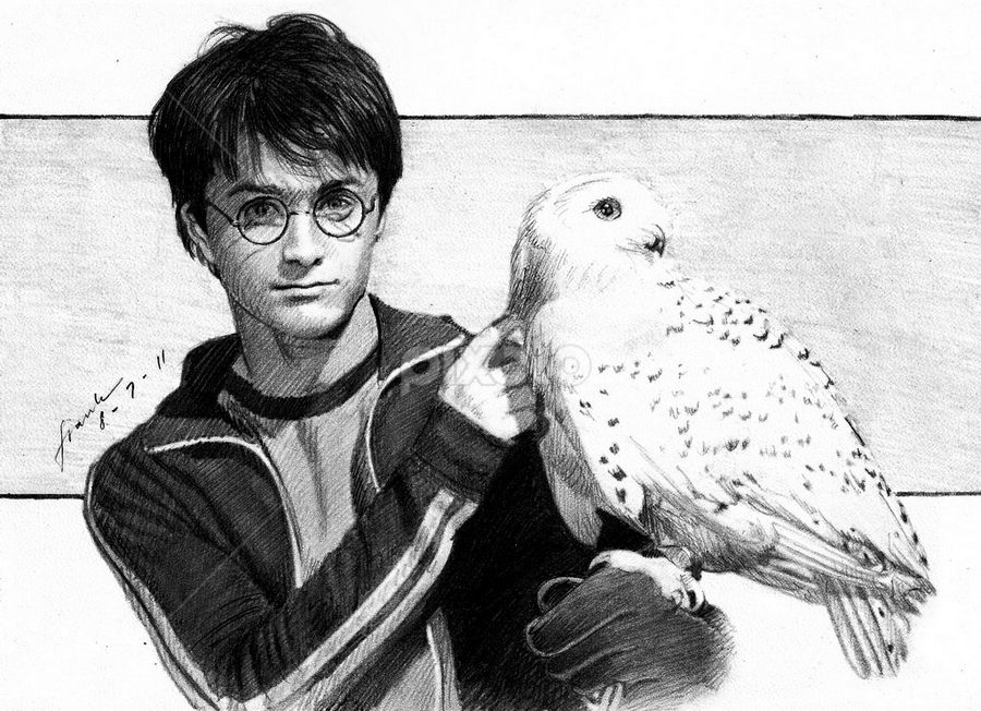 Harry Potter & Hedwig Sketch by Franky Go - Drawing All Drawing ( hogward, ludwig, harry, jk rowling, sorcerer, snow owl, movie, harry potter, actor, white owl, fantasy, rowling, warner bross, potter, owl, radcliffe, daniel radcliffe )