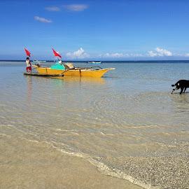 Serene Morning by Dick Shia - Transportation Boats ( sea, beach, boat )