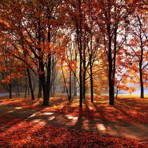 IMG_2433 Panorama26s_pixoto.jpg