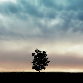 The Lone Tree by Jennifer Holmes - Landscapes Cloud Formations ( abstract, field, idaho, clouds, sky, tree )
