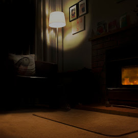 by Todd Cunnard - Buildings & Architecture Homes ( exposure, interior, home, fire place, pillow, lighting, silhouette, owl, lamp, nz, house, new zealand, fire )