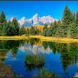 Grand Tetons by Will Zook - Landscapes Mountains & Hills