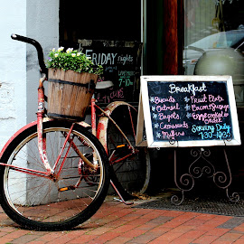 Open for Breakfast by Jeffrey Lorber - Transportation Bicycles ( picnic cafe, bike, lorberphoto, dahlonega, jeffrey lorber, bicycle )