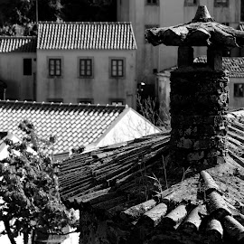 Roofs by Gil Reis - Black & White Buildings & Architecture ( places, roofs, buildings, houses, travel, life )
