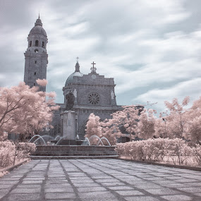 Manila Cathedal on Infrared by Jeremy Mendoza - Buildings & Architecture Public & Historical ( church, infraredphotography, manila, philippines,  )
