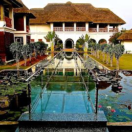 Glass Bridge by Doug Hilson - Buildings & Architecture Other Exteriors ( glass bridge, lily pond, exterior, india, hotel )