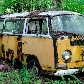 by Terry DeMay - Transportation Automobiles (  )