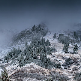 Cloud Mountain by Brandon Montrone - Landscapes Mountains & Hills ( mountains, winter, mountain, peak, snow, trees, canyon, forest, landscapes, landscape )