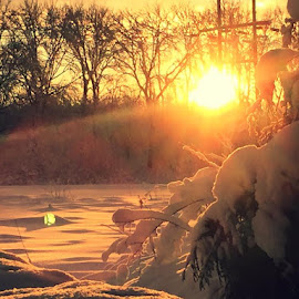 by Heidi George - Landscapes Sunsets & Sunrises