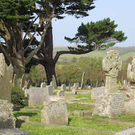 St Keverne Cornwall UK by Angie Keverne - City,  Street & Park  Cemeteries ( church, graves, cemetary, trees, stone, cornwall,  )