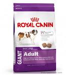 Online pet food