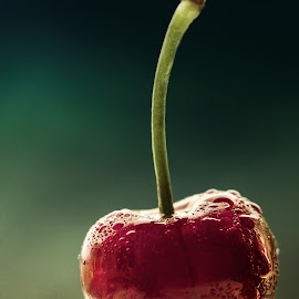 lone cherry by BO LED - Food & Drink Fruits & Vegetables ( water, cherry, fruit, red, drops, closeup )