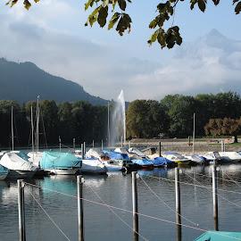 Walensee, St Gallen, Switzerland by Serguei Ouklonski - Transportation Boats ( sky, nature, tree, boats, water, summer, transportation, mountain, marina, outdoors, green color, lake, scenics )