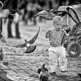 Wow by Claudiu Guraliuc - City,  Street & Park  Street Scenes