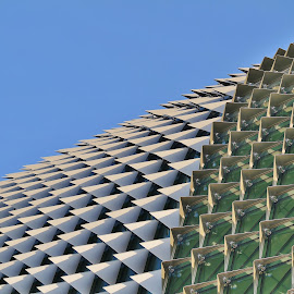 Roof Pattern #1 by Koh Chip Whye - Buildings & Architecture Other Exteriors (  )