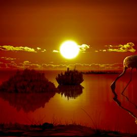 Sol de la perla by Alberto Nadgar R. - Digital Art Places ( flamenco, sol, atardecer )