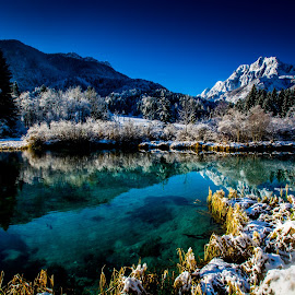 Snow on the Lake by Bogomir Košir - Landscapes Waterscapes ( spruces, mountain, grass, bushes, snow, trees, lake )