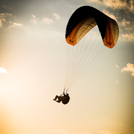 Paragliding by Aris Canis von Furcsoara - Sports & Fitness Other Sports ( flying, skygliding, paragliding, blue sky, sky, dawn, sunset, sky diving )