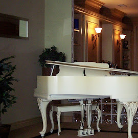 Play it for me by Sandy Stevens Krassinger - Artistic Objects Musical Instruments ( baby grand, piano, bench, pedals, artistic object )