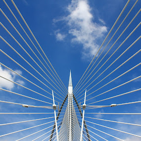 Spreading wings of support by Tan  Kian Yong - Buildings & Architecture Bridges & Suspended Structures ( support, putrajaya, cables, architecture, bridge )
