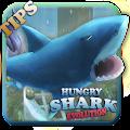 Tips hungry Shark Evolution APK for Bluestacks