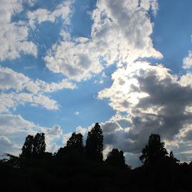 În parc by Florin Stoia - Landscapes Cloud Formations ( în parcul herastrau )