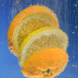 Orange and Lemon Slices by Jim Downey - Food & Drink Fruits & Vegetables ( fruit slices, orange, wet, bubbly, lemon )