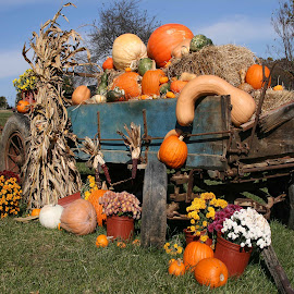 Garden Harvest Wagon by Gwen Paton - Food & Drink Fruits & Vegetables