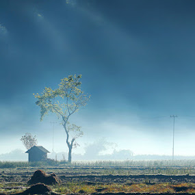 Lembah Sembalun by Adhii Motorku - Landscapes Mountains & Hills