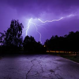 LIGHTNING by Jānis Bija - Landscapes Weather ( lightning, dark, trees, night, long exposure, latvia, storm, light )