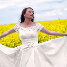 yelow by Jovan Barajevac - Wedding Bride ( field, yellow flowers, novi sad, creative wedding photography, serbia, wedding, magic moments, bride, kreativne fotografije venčanja )
