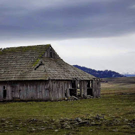 Old barn by D.j. Nichols - Instagram & Mobile Android ( old barn )