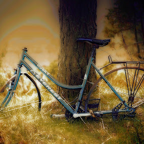 by Bente Agerup - Transportation Bicycles ( bicycles, old, bikes, transportation, memory )