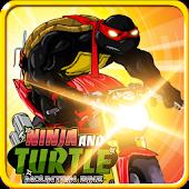 Ninja and Turtle Mountain Bike